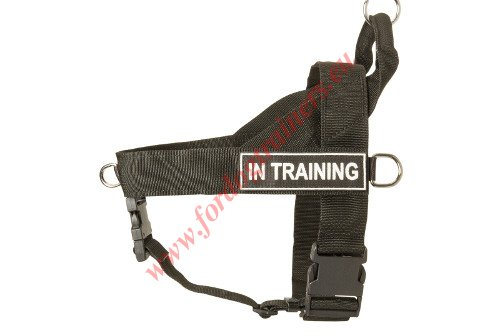 Nylon Dog Harness with Front Ring
