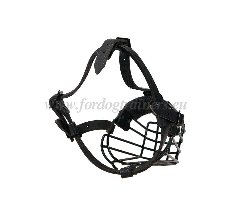 Antifrost Coated Dog Muzzle Wire Basket M31057 Museruola A