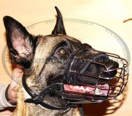 Padded Basket Muzzle for Belgian Malinois ⚶