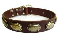 Retro Rulz Gorgeous Vintage Dog Leather Collar for Rttweiler