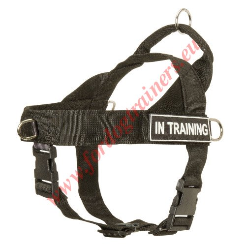 Dog Harness for Tracking and Pulling