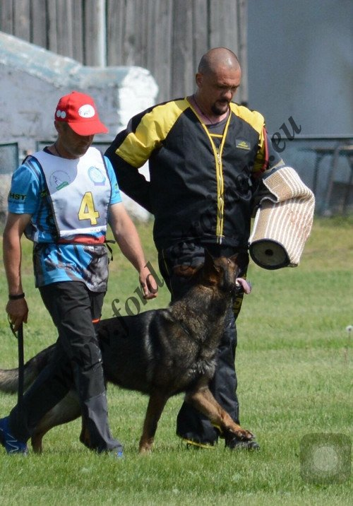 Bite