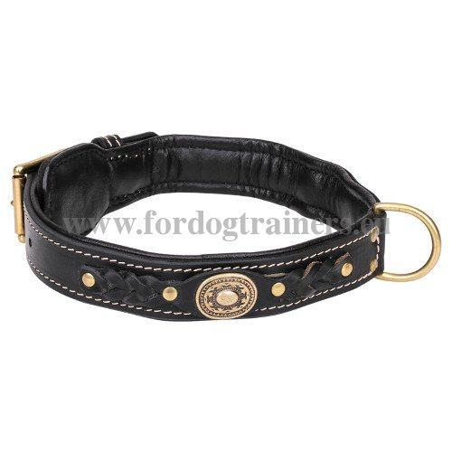 Leather Dog Collar with Braids