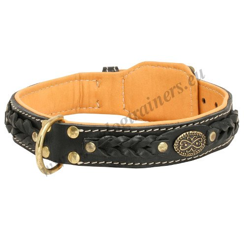 Braided Leather Dog Collar Wide