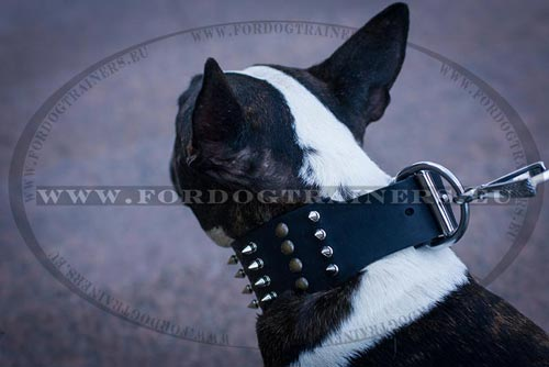 Extra Big Dog Prong Collar