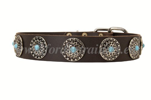 Exquisite Leather Collar for Molossers
