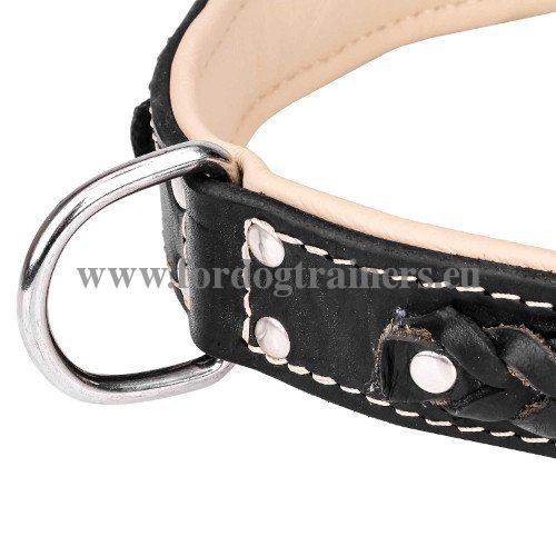 Leather Dog Collar with Rivets Hand Set