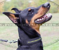 Collier 2 couches nylon pour Dobermann | Collier simple ❺