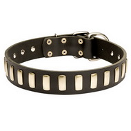 Leather Dog Collar Stylish | Studded Collar Exclusive