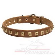 Studded Dog Collar, Leather with Square Studs!