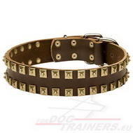 Super leather collar with square plates, studded dog collar