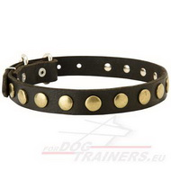 Studs and Circles Design Leather Collar