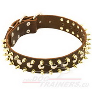 Studded Dog Leather Collar