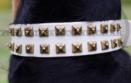 White Leather Collar with Squares for Doberman ✦