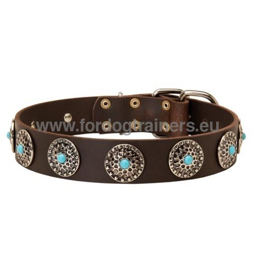 Handcrafted designer dog collar decorated for Boxer
