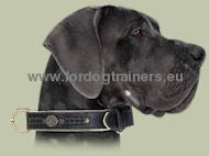 Exclusive Nappa Padded Handmade Leather Dog Collar, Great Dane
