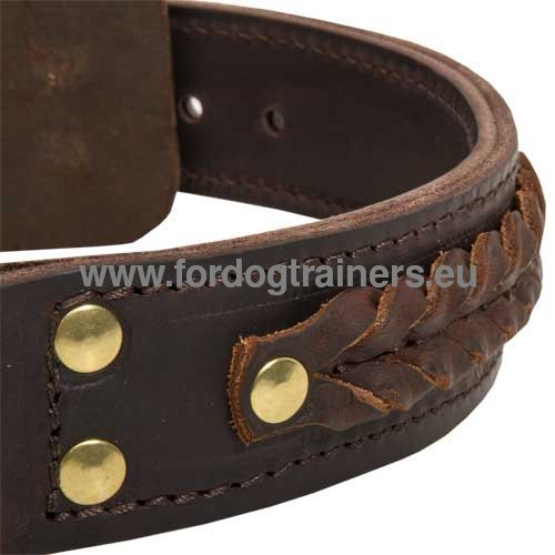 Leather Collar Decorated with Braids