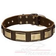 Dog Leather Collar Wide with Decorative Plates