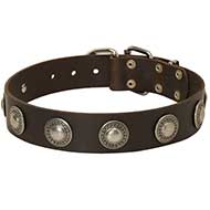 Dog Leather Collar with Embossed Plates
