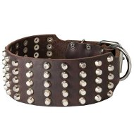 Wide Dog Collar with Small Pyramids