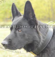 Agitation Dog Collar Extra Comfort for German Shepherd