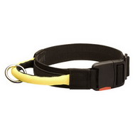 Dog Collar Nylon Wide, Handy Handle & Quick Release Buckle