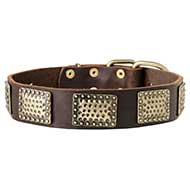 Gorgeous War Dog Leather Dog Collar