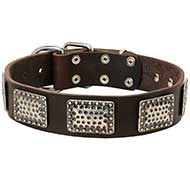 Exclusive Leather Dog Collar With Vintage Plates