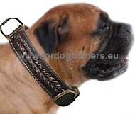 Handmade Braided Leather Dog Collar for Bullmastiff ⧓