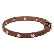Leather Dog Collar with Half-Ball Chrome Plated Studs