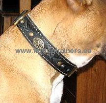 Bullmastiff handmade dog collar high quality with