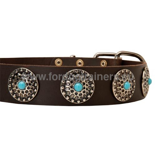 Elegant dog collar with fancy decoration for Boxer