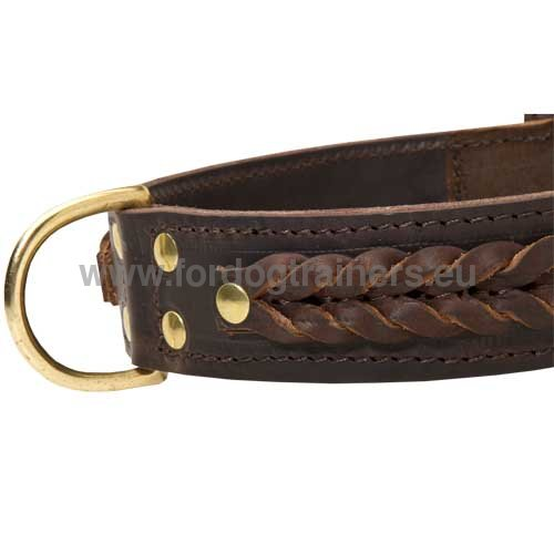 Handcrafted Dog Collar with Braids