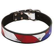 Designer Collar Leather with Image American Style