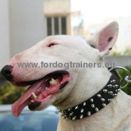 Bull Terrier Leather 3 Rows Spiked Dog Collar ✶