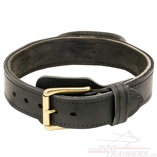 Solid 2ply leather collar for German Shepherd