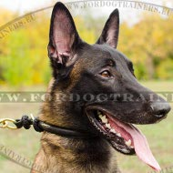 Dog Choke Leather, Training Dog Collar Round