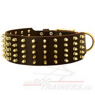 Spiked Leather Collar for Dog