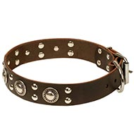 Leather Canine Collar