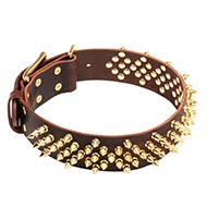Collar Leather with Brass Spikes for Dog ↟