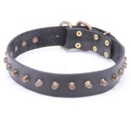 Leather Dog Collar with Pyramids!◘
