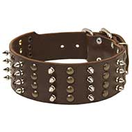 Leather Dog Collar Decorated with Spikes