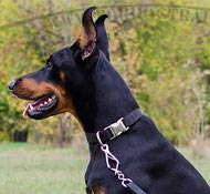 Nylon Dog Collar K9, Lightweight for Doberman
