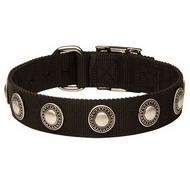 Designer Dog Collar of Nylon with Silver Circles ◉