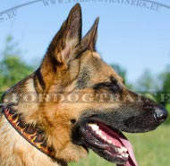 "German Shepherd Leather Collar Design with Image ""Flame"" ✔"