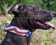 Designer Collar Leather American Flag &#9872