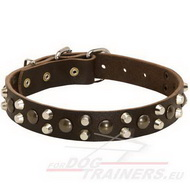 "Studded Dog Collar with ""Nuts"" Design Pyramids, Best Leather"