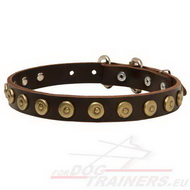 Leather Dog Collar with Dotted Circles Design!