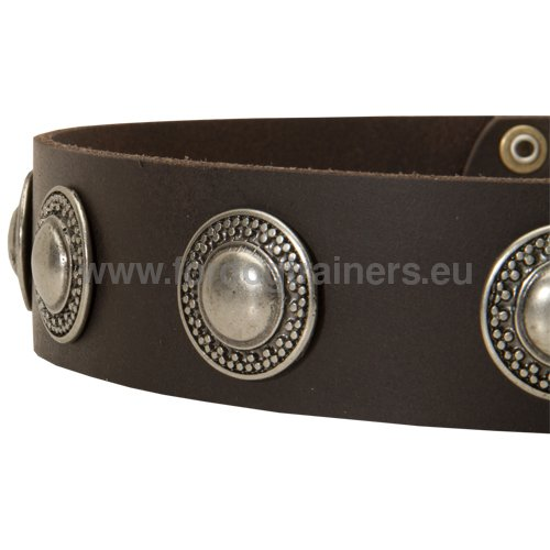 Extra strong leather collar with