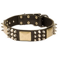 Dog Collar Leather Exclusive with Spikes, Pyramids and Plates